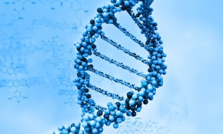 Researchers Pinpoint Genetic Variant Tied to Increased Stroke Risk