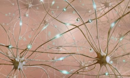 Neuron Discovery Moves Researchers Closer to Movement Disorder Treatment