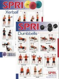 Full Color Chart Displays Popular Resistance Exercises