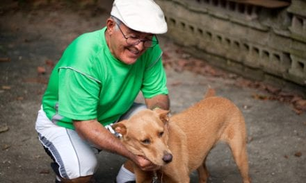 Animal-Assisted Therapy May Benefit Joint Replacement Patients