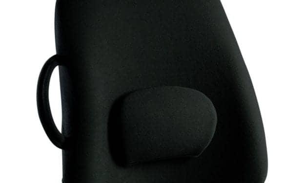 Lowback Backrest Support Designed for Ergonomic Seating