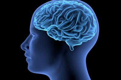 Study Highlights Neuroinflammation in Brains of Chronic Pain Patients