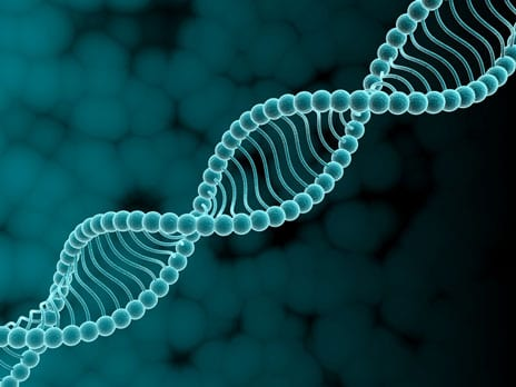 Study Focuses On Potential Role of Genes in ACL Injury