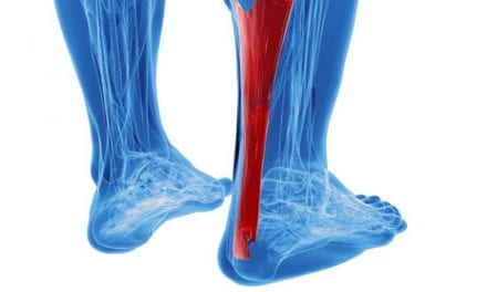 Research Points The Way Down Tendinosis Treatment Path