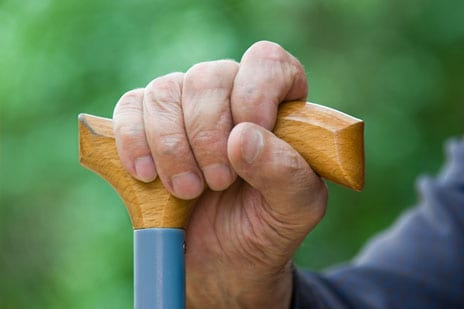 Research Seeks to Contribute to Understanding of Sarcopenia