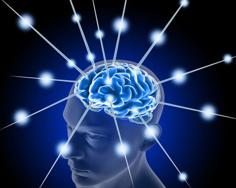 Marucci BodiTrak Promotes Network Targeting Concussion Management