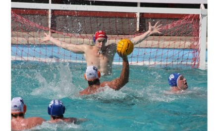 Survey Notes 36% of Water Polo Players Report Concussions
