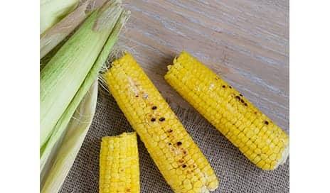 Soluble Corn Fiber Supplementation May Help Build and Preserve Bone