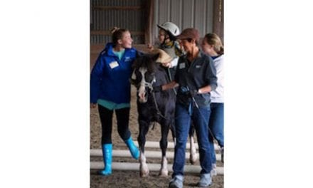 College/Riding School Partnership Aims to Place Equine Therapy on Future Therapists' Radar