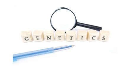 Researchers ID Genes Likely Responsible for Bone Density and Strength