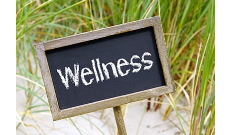 ICAA-Supported Webinar Features Aquatics as One of Eight Dimensions of Wellness
