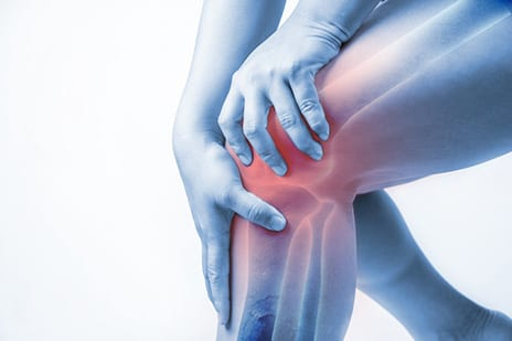 HSS Launching Study to ID Clues to Aid Postsurgery Meniscal Healing