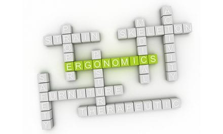 Ergonomics and the Rehab Professional