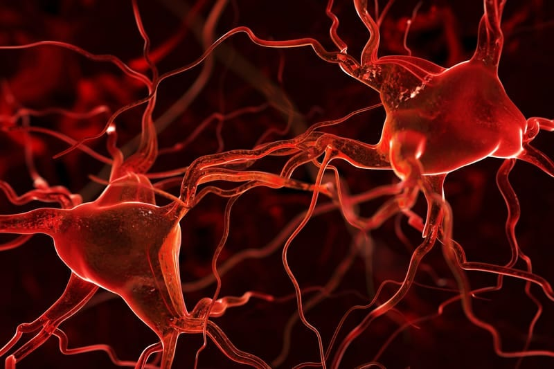 This Helps Speed Up Nerve Regrowth in Trauma Patients